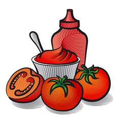 tomatoes with sauce vector image
