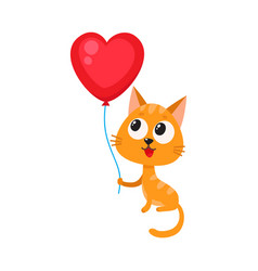 cute and funny cat kitten holding red heart vector image