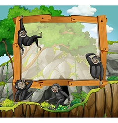 Frame design with gibbons at the cave vector image
