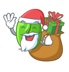Santa with gift green coffee beans isolated on vector