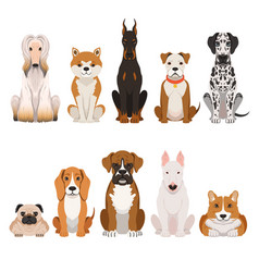 funny dogs in cartoon style vector image vector image