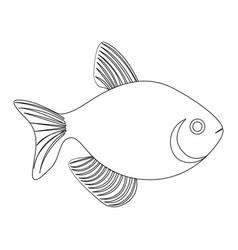 silhouette fish aquatic animal icon flat vector image