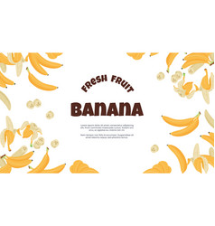 banana banner yellow cartoon tropical fruit vector image