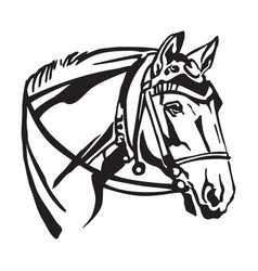 Decorative portrait of horse with bridle vector