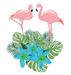 flamingo and flowers vector image