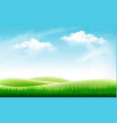 nature summer background with green grass and vector image