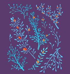 wild grass and herbs arrangement composition vector image