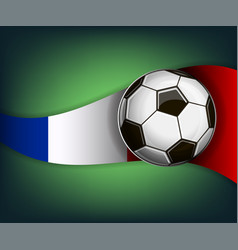 with soccer ball and flag of france vector image
