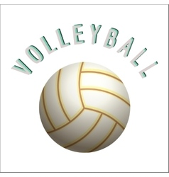 Volleyball ball icon vector image vector image