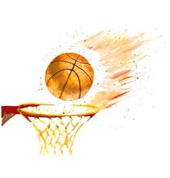 watercolor basketball ball thrown in a basket vector image