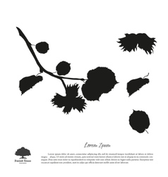 Black silhouette of branches of hazelnuts vector image