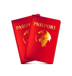Two passports isolated on white vector image