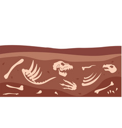 Archeology bones animal fossil dirt ground vector
