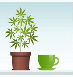 cannabis herbal tea and marijuana plant vector image