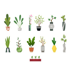 Collection indoor house plants in pots home vector