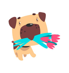 funny pug dog with a bouquet of flowers in his vector image