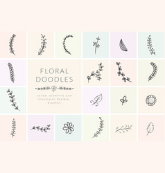 hand drawn doodle florals and plants vector image