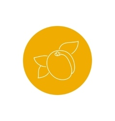 Icon Apricot in the Contours vector