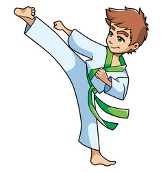 Karate kick boy vector