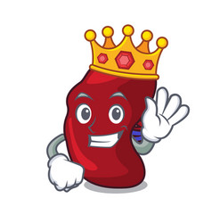 king spleen mascot cartoon style vector image