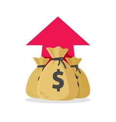 Money profit rising up concept or cash vector
