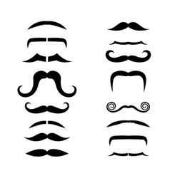 set of isolated facial beards stylebeards and vector image