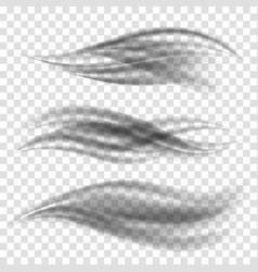 smooth stream flow set vector image