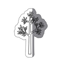 Sticker outline tree with leaves and trunk vector
