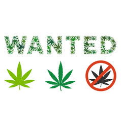 Wanted caption mosaic of cannabis vector