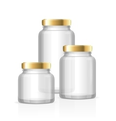 Glass Jars Bottles Empty Transparent vector image vector image