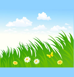 sky and grass background vector image vector image
