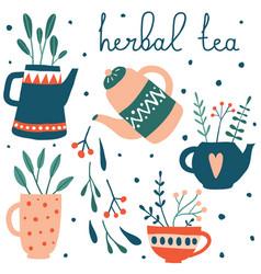 cute herbal tea set vector image