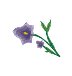 drawing pansy flower ornament image vector image