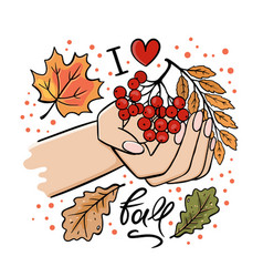 Hand with rowan branch and autumn leaves vector