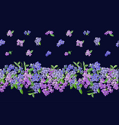 Seamless border with phlox flowers isolated on vector