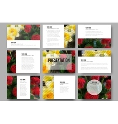 Set of 9 templates for presentation slides Roses vector