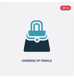 two color handbag female icon from woman vector image