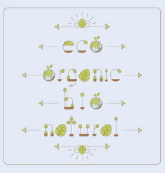 thin line eco font vector image
