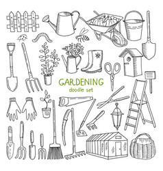 hand drawn of gardening vector image vector image