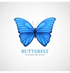 Butterfly logo design template Insect or vector