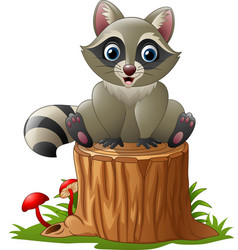 cute raccoon on the tree log vector image