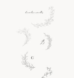 line drawing leaf branch wreaths frames vector image