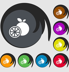 orange icon sign Symbols on eight colored buttons vector image