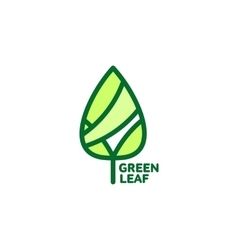 Pointed green leaf growing up logo template vector image
