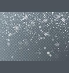 snowfall christmas snow falling snowflakes vector image