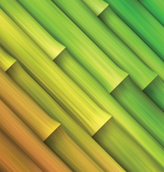 Bamboo pattern background vector