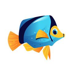 blue surgeon fish sea tropical aquarium fish vector image