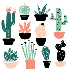 cactus and succulents set vector image