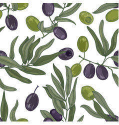 elegant botanical seamless pattern with olive tree vector image