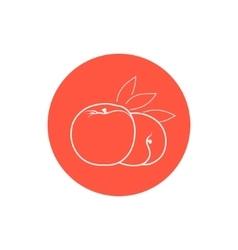 Icon Peach in the Contours vector